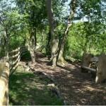 Nunckley Trail