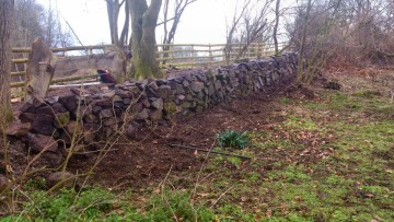 Repairs to dry stone wall at Nunckley Trail