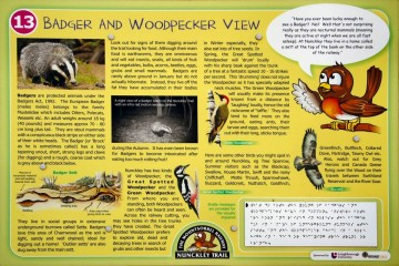 Nunckley Trail: The Badger and Woodpecker View